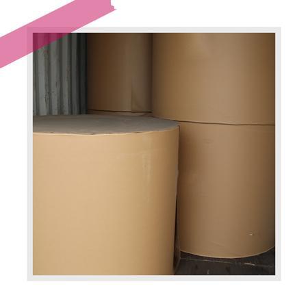 地龙白板纸(卷筒)